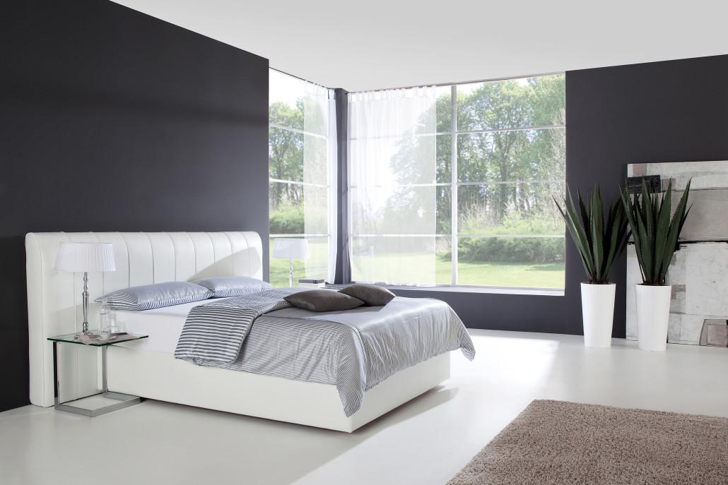 dreamswiss polsterbett giger natur design. Black Bedroom Furniture Sets. Home Design Ideas